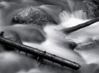 Rock and Logs, Chicago Creek, Colorado 2011