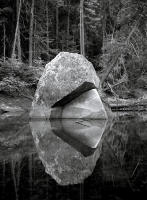 Reflection, Merced River, California 2008