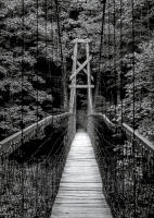 Footbridge, Showtee, Kentucky 1996